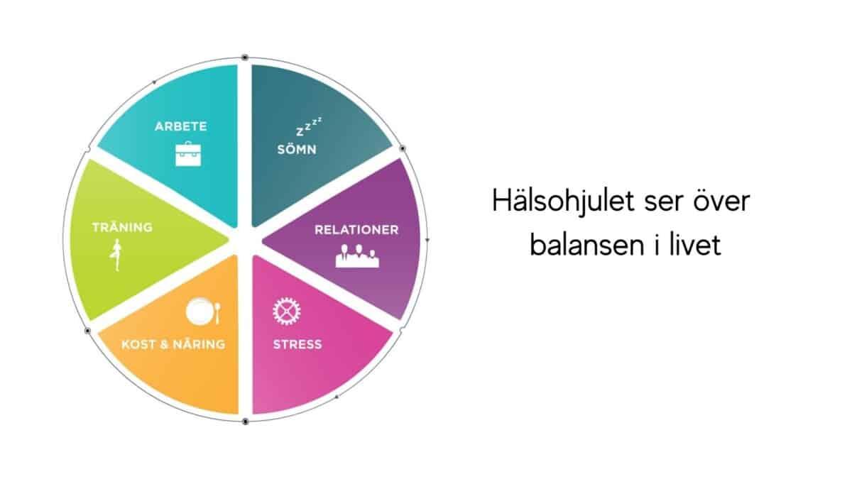 Hälsohjulet ser över balansen i livet